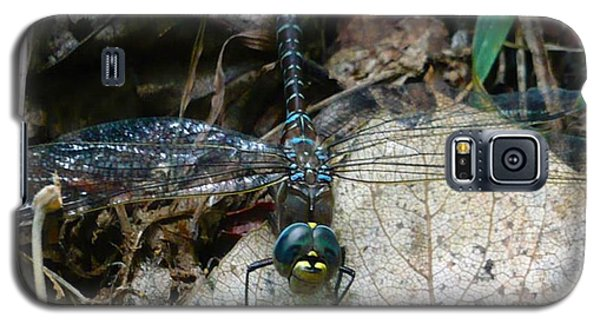 Blue Dragonfly  Galaxy S5 Case