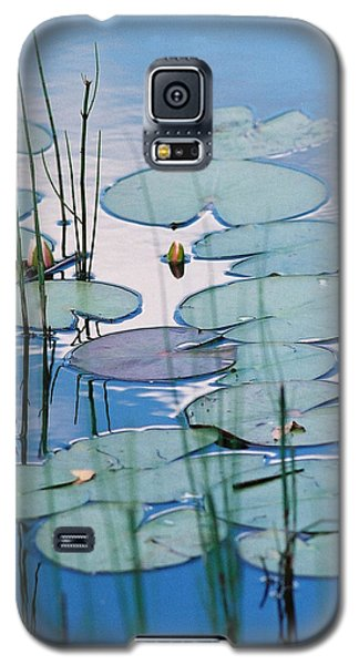 Galaxy S5 Case featuring the photograph Blue Dreams by Doris Potter