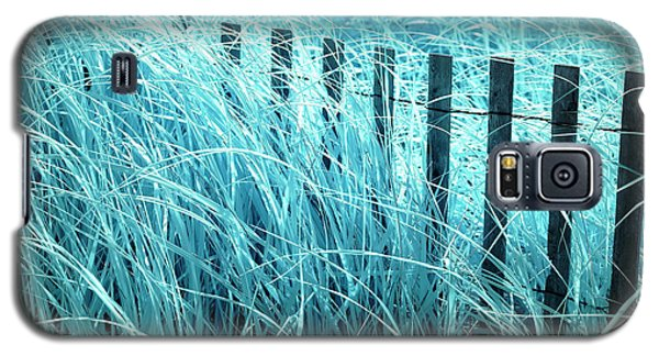 Galaxy S5 Case featuring the photograph Blue Dune Grass by John Rizzuto