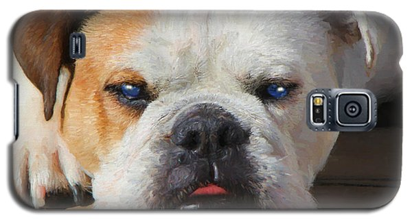 Blue-eyed English Bulldog - Painting Galaxy S5 Case