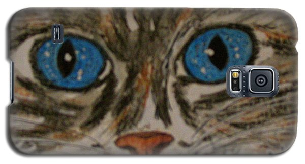 Blue Eyed Tiger Cat Galaxy S5 Case by Kathy Marrs Chandler