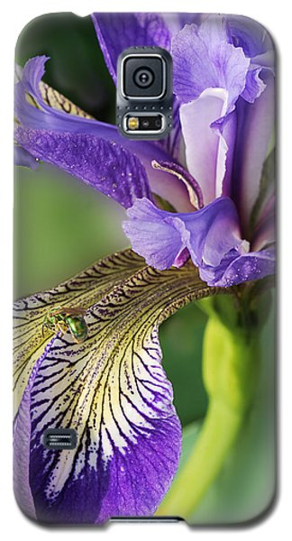 Galaxy S5 Case featuring the photograph Blue Flag  by Susan Capuano