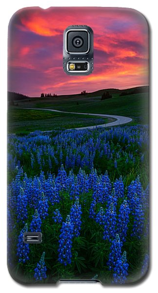 Blue Flame Galaxy S5 Case