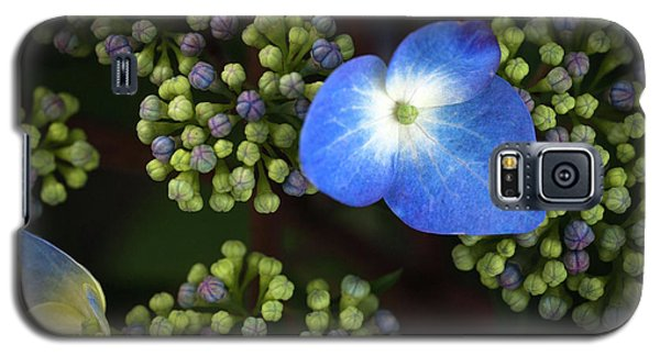Blue Flower Galaxy S5 Case