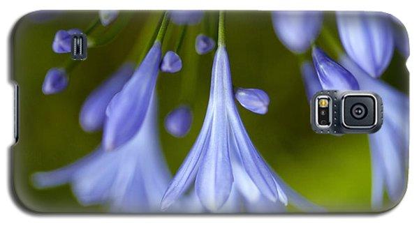 Blue Flowers Galaxy S5 Case