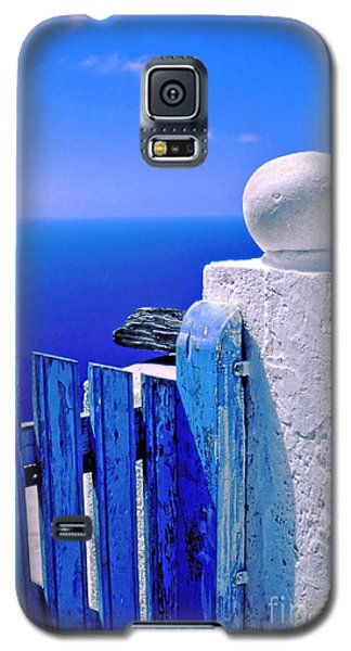 Blue Gate Galaxy S5 Case