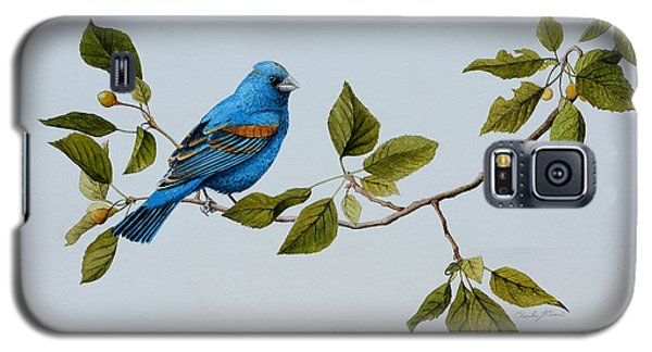 Blue Grosbeak Galaxy S5 Case