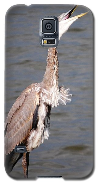 Blue Heron Calling Galaxy S5 Case