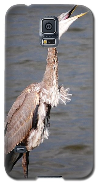 Galaxy S5 Case featuring the photograph Blue Heron Calling by Sumoflam Photography