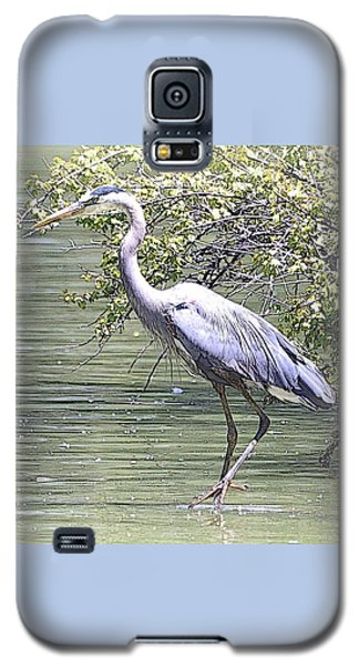 Blue Heron Galaxy S5 Case by Clarice  Lakota