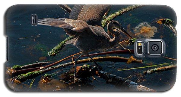 Blue Heron Fishing Galaxy S5 Case