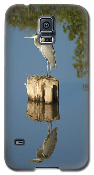 Galaxy S5 Case featuring the photograph Blue Heron by Heidi Poulin