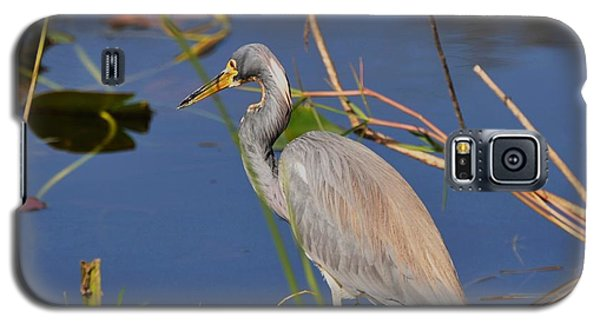 Galaxy S5 Case featuring the photograph Blue Heron by Helen Haw