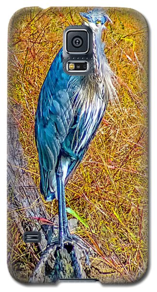 Galaxy S5 Case featuring the photograph Blue Heron In Maryland by Nick Zelinsky