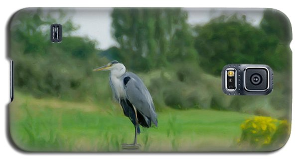 Blue Heron Galaxy S5 Case by Jan Daniels