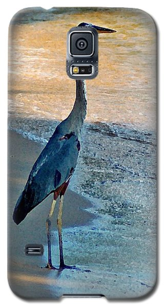 Blue Heron On The Beach Close Up Galaxy S5 Case