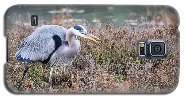 Galaxy S5 Case featuring the photograph Blue Heron On The Hunt by Eddie Yerkish