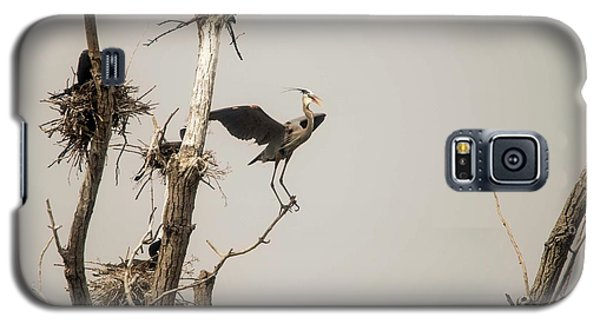 Galaxy S5 Case featuring the photograph Blue Heron Posing by David Bearden
