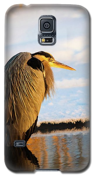 Blue Heron Resting Galaxy S5 Case