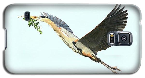 Galaxy S5 Case featuring the photograph Blue Heron Series Twig 2017 by Deborah Benoit