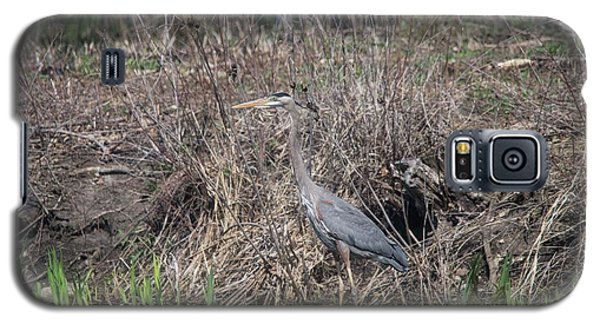 Galaxy S5 Case featuring the photograph Blue Heron Stalking Dinner by David Bearden