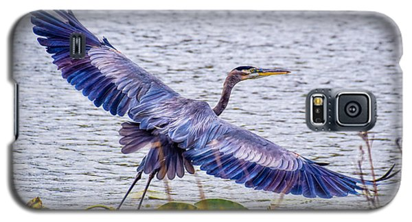 Blue Heron  Take Off  Galaxy S5 Case