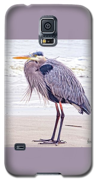 Blue Heron Watching Galaxy S5 Case