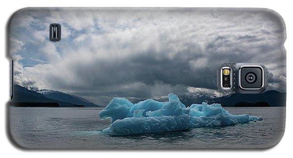 Blue Horse Galaxy S5 Case