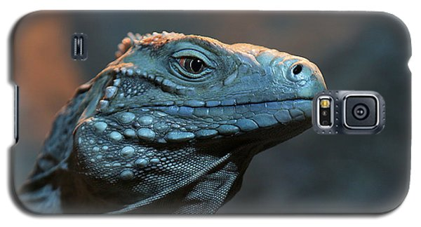 Blue Iguana Galaxy S5 Case