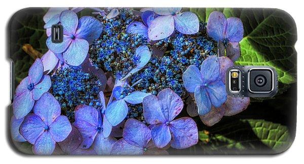 Blue In Nature Galaxy S5 Case