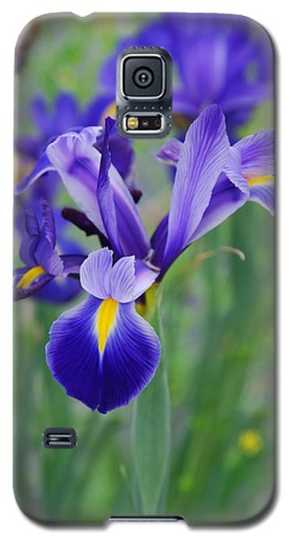 Blue Iris Flower Galaxy S5 Case