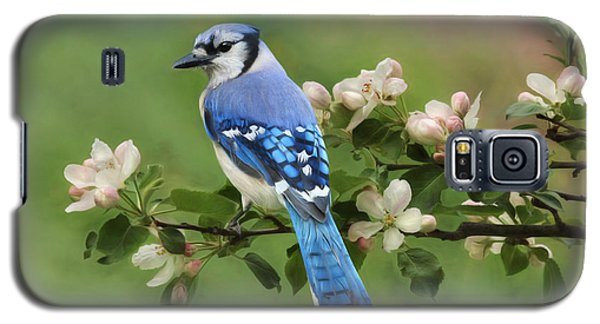 Bluejay Galaxy S5 Case - Blue Jay And Blossoms by Lori Deiter