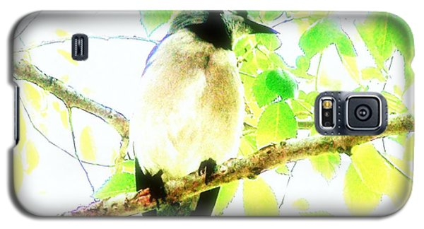 Galaxy S5 Case featuring the photograph Blue Jay IIi by Clarice  Lakota