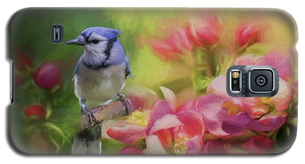 Blue Jay On A Blooming Tree Galaxy S5 Case