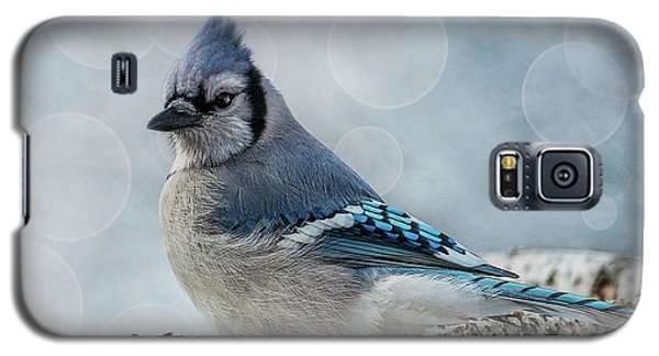 Blue Jay Perch Galaxy S5 Case