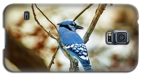 Blue Jay Galaxy S5 Case