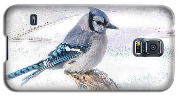 Blue Jay Snow Galaxy S5 Case