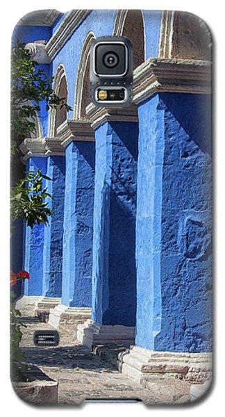 Blue Monastery Galaxy S5 Case
