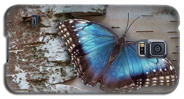Blue Morpho Butterfly On White Birch Bark Galaxy S5 Case