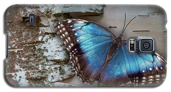 Blue Morpho Butterfly On White Birch Bark Galaxy S5 Case