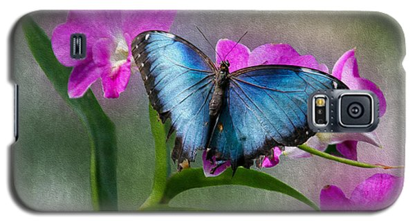 Blue Morpho With Orchids Galaxy S5 Case