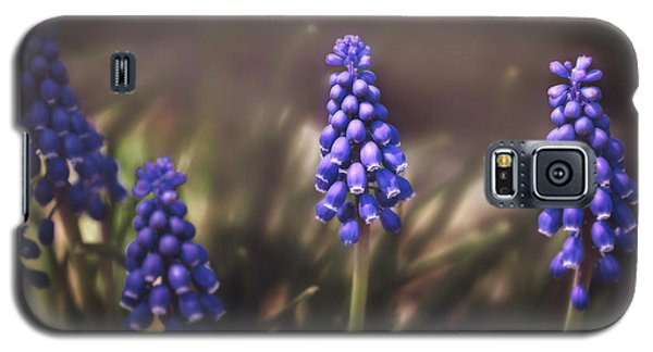 Blue Muscari Galaxy S5 Case by Eduard Moldoveanu