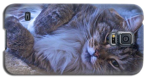Blue Oblivion Galaxy S5 Case by Gwyn Newcombe