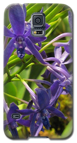 Galaxy S5 Case featuring the photograph Blue Orchid by Alfred Ng