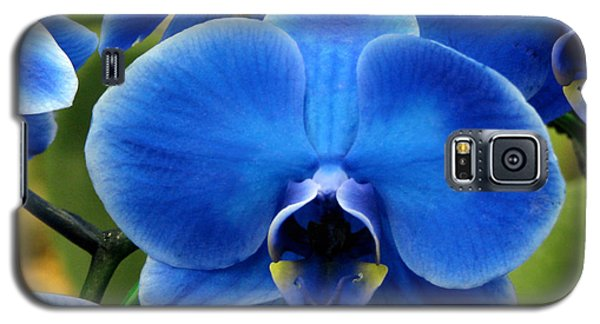 Blue Orchid Galaxy S5 Case
