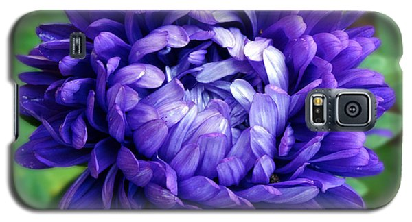 Blue Petals Galaxy S5 Case