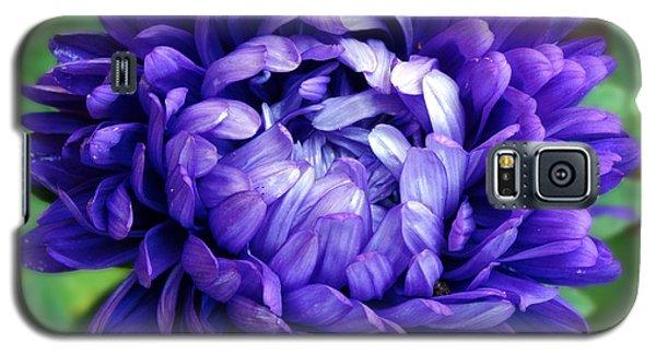 Blue Petals Galaxy S5 Case