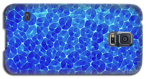 Cells Galaxy S5 Case