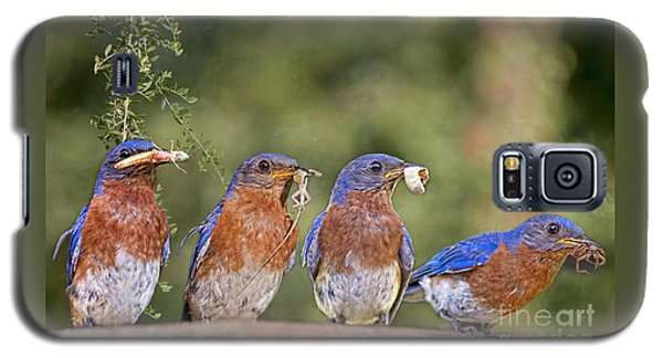 Blue Plate Lunch Special Galaxy S5 Case