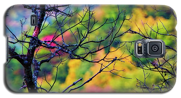 Blue Ridge Autumn Galaxy S5 Case